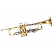 Stradivarius 180 - 37 ML