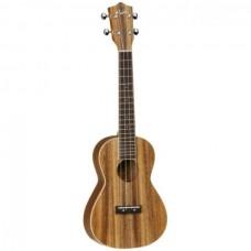 ukulele TUJ2